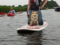 SUP en kano IJslandse Honden mei 2016