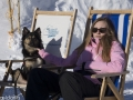 IJslandse Honden Wintersport Oostenrijk 2016 (1)