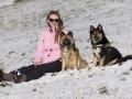 IJslandse Honden Wintersport Oostenrijk 2016 (26)